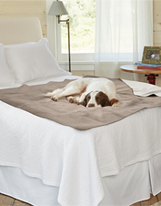 Looks like a regular blanket, but our Reversible Water-Resistant Throw is especially designed for dogs.