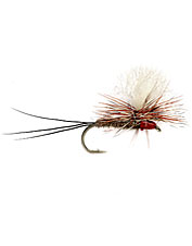 This Slate Drake fly is the ultimate Iso imitation.