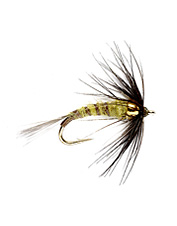 Fish the weighted soft hackle wet fly on the swing and wait for the take, it won't be long.