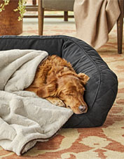Our supremely soft Embossed Sherpa Throw blanket comforts your dog at home or on the road.