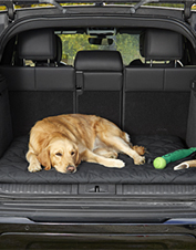 This convenient travel dog bed fits in your car's cargo area, and hoses off to clean.