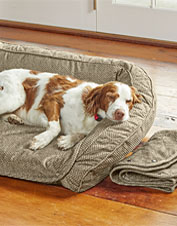 The plush Orvis Airfoam Bolster Dog Bed comes with pads that snap off for easy cleaning.