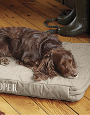 Show your dog how much you care with our Dream Lounger cover.