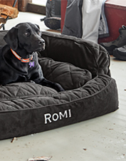 Our ComfortFill-Eco Couch Dog Bed wraps your dog in the soft, supportive comfort she deserves.