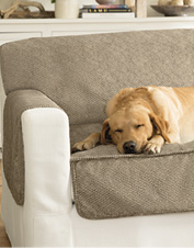 Our non-slip Grip-Tight Furniture Protector protects the sofa from dog hair, dirt, and more.