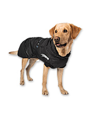 Protect your companion from the elements in this high-performance all-weather dog parka.