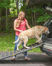 Reflective material makes this tri-fold car ramp ideal for an older or vision-impaired dog.
