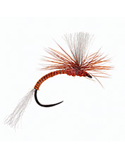 Even the most selective trout can't refuse this tactical emerger fly pattern.