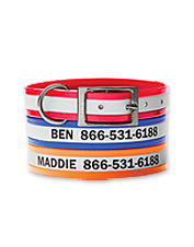This personalized, coated reflective collar will keep your dog visible and sweet smelling.