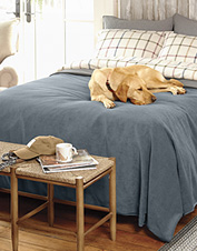 This attractive waterproof protector effectively safeguards bedding from dog hair and dirt.