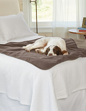 This Handsome Dog Proof Furniture Protector Has The Same Appeal As Your  Favorite Fleece Throw