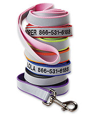 Keep them safe with our customizable, reflective dog leash. Made in USA.