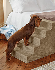 Give your dog a leg up onto your bed or furniture with these large lightweight foam dog steps.