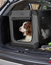 The Orvis Hose-Off Folding Travel Dog Crate boasts a compact design ideal for car or home.