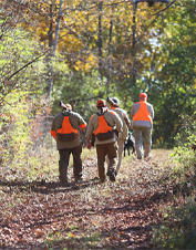 What better way to learn the sport or become a better and more productive upland hunter.