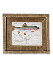 These rustic, framed trout art prints feature illustrations of bent rods and brilliant fish.