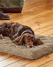 orvis toughchew dog bed review