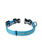 Clips under this personalized adjustable collar keep your dog's flea protection out of sight.