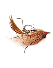 If you favor casting for carp, then use a fly that mimics the fish's favorite—the dragonfly.