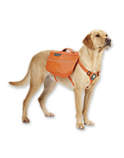 Your dog can earn his keep carrying his own supplies in this Everyday backpack for canines.