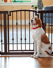 Secure your companion within dog-friendly areas with this walk-through Metal Spindle Gate.