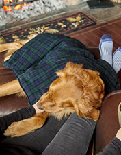 Simply heat this lavender-infused dog blanket in the microwave for a calming effect.