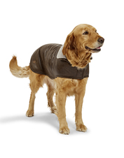 Your companion will look flight-ready in this washable Faux Leather and Fleece Dog Jacket.