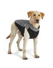 Increase visibility for safer nighttime walks with this highly reflective dog jacket.