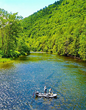 Orvis-Endorsed Fly-Fishing Guide in Pine Creek, Pennsylvania
