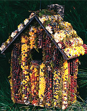 Edible Corncob Birdhouse