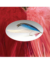 The largest saddle hackle fly tying feathers.