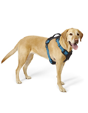 The Tough Trail Dog Harness is ready for every adventure with your dog.