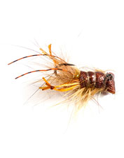 Trout love to slurp up Joe's Mini Crayfish Jig, a phenomenal fly for any fishing technique.
