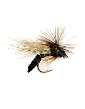 Trout can't ignore this Caddis emerger fly because it behaves exactly like the naturals.