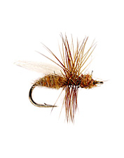 Catch more trout with this irresistible ant fly.