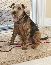 Prevent your dog from tracking in mud and dirt with our water-absorbing door mat.