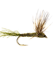 A must-have in every box of trout flies