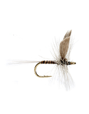 Picky trout love the Blue Quill dry flies.