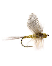 This BWO dry fly will prove itself over picky trout.