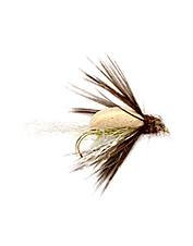 When caddis are  present, trout love these foam caddis fly emergers.