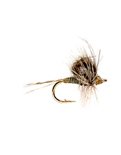 This quill body emerger fly is a great choice for selective mayfly feeders.