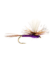 Tie on this deadly purple parachute dry fly to show trout something unique.