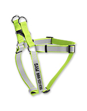 A Personalized Reflective Harness offers better visibility for walking your dog in low light.