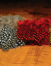 Fly-tying guinea hackle is a traditional hackle great for a range of patterns. Made in USA.