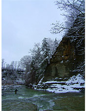 Orvis-Endorsed Fly-Fishing Guide in Fredonia, New York