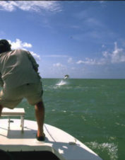 Orvis-Endorsed Fly-Fishing Guide in Tavernier, Florida