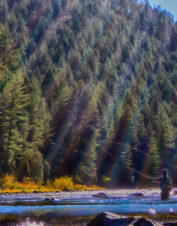 Orvis-Endorsed Fly-Fishing Guide Services in Livingston, Montana