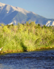 Orvis-Endorsed Fly-Fishing Outfitter in Canon City, Colorado
