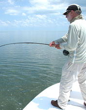 Learn saltwater fly fishing in the backcountry of the Everglades