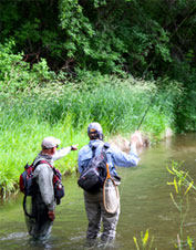 Learn how to become a complete trout angler in any fishing situation